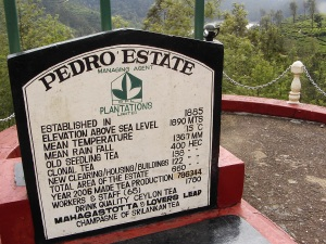 Pedro Estate
