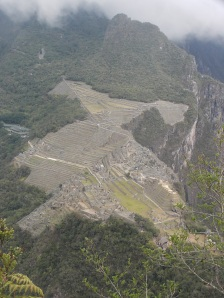 Alternate view of Macchu Picchu from the summit of Waynu Picchu