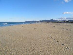 Beautiful beach at Scamander