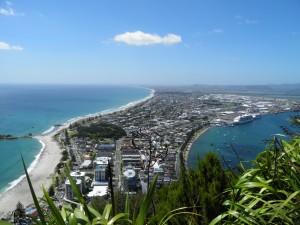 Mt Maunganui from the mount