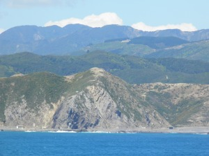 The south coast of the North Island