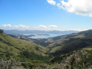 Looking down over Charteris Bay