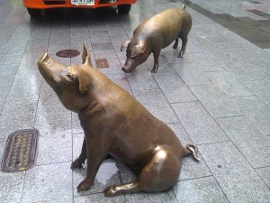 Pigs on Rundle Mall