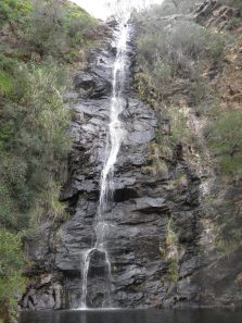 First waterfall on the Waterfall gully track