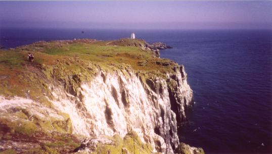 Looking towards the lighthouse on Isle of May