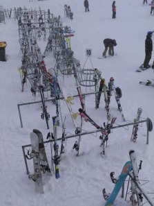 Line up of skiis