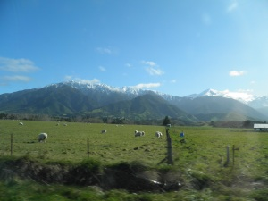 The countryside south of Kaikoura