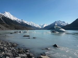 Icebergs on Lake Tasman