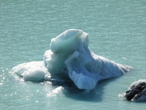 Iceberg on Lake Tasman