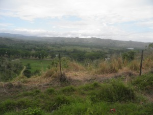 Sigatoka Valley
