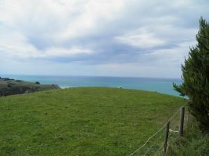 Pegasus Bay Lookout