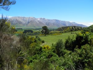 Mt Hutt range and the beautiful Canterbury countryside