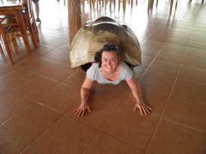 Soy una tortuga