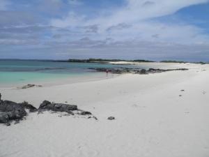 Playa Bachas