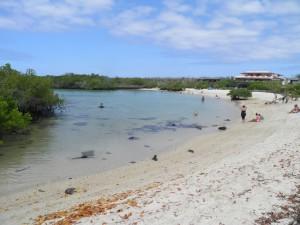Playa Aleman