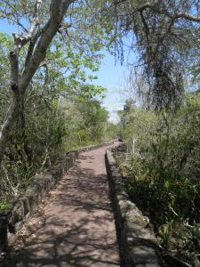 The long walk to Tortuga Bay