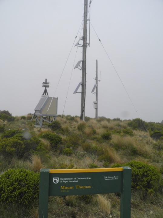 Mt Thomas summit
