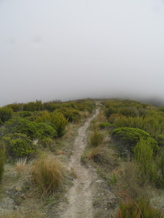 Following the Ridge Track into the clouds