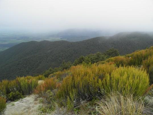 Following the Ridge Track