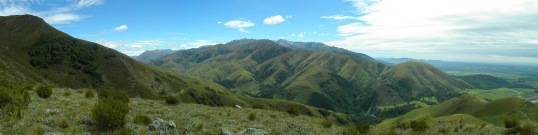 View from Mt Alford track