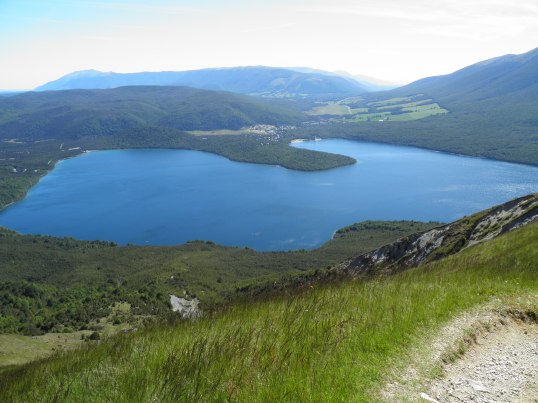 Lake Rotoiti on the ascent