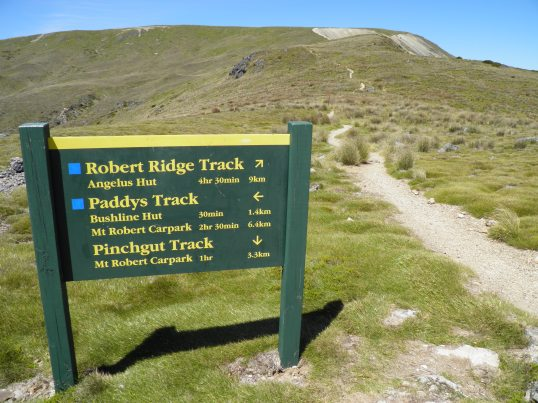 Track options from the summit of Mt Robert