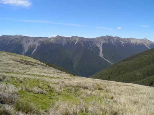 St Arnaud range from Paddy's Track