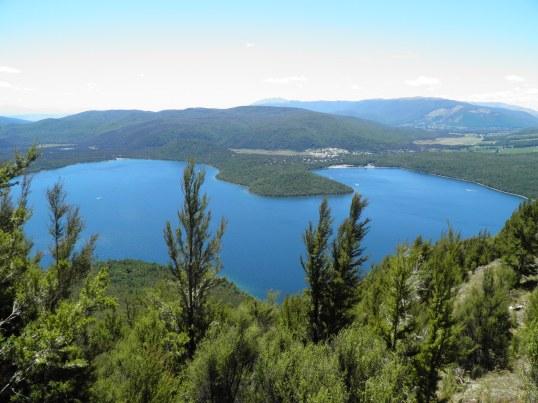 Lake Rotoiti through the forest