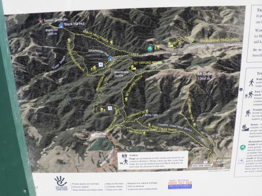 DOC Track Map at Cooper's Creek carp park