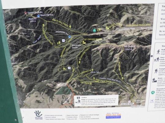 DOC Track Map at Cooper's Creek carp park