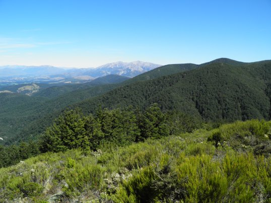 Neighbouring mountains from half-way up Mt Oxford