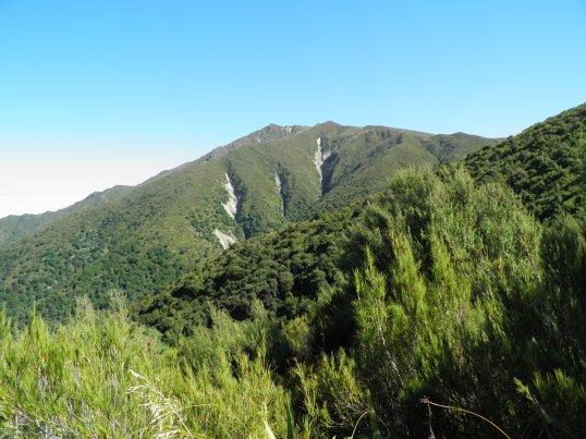 Little Mt Peel summit in the far distance