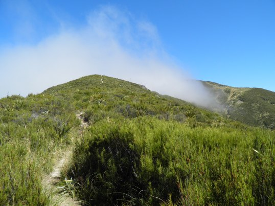 Cloud riding the ridge