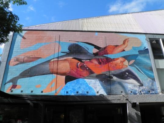 Splash, Artist Unknown, YMCA Building, Hereford Street