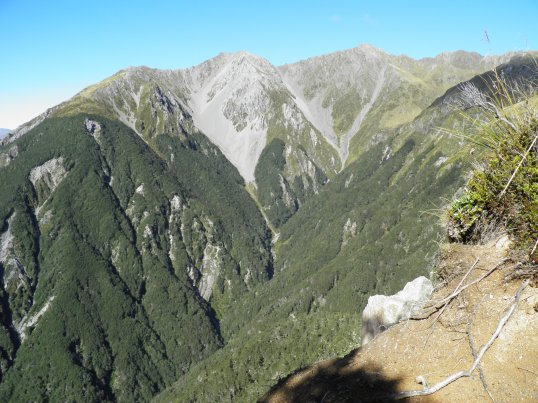 Nearby Mt Bealey