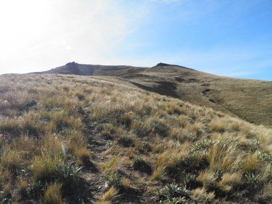 Looking towards the summit ridge