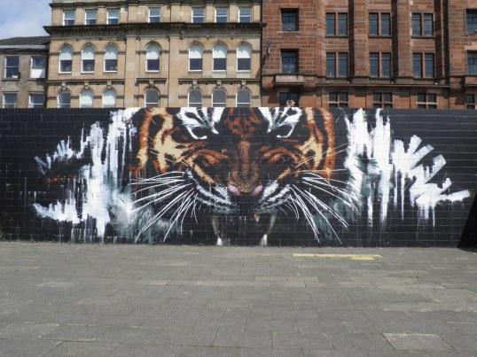 Glasgow Tiger, Artist Unknown