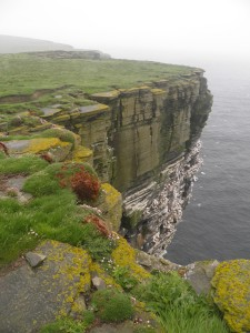 Noup Head cliffs