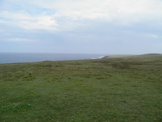 North Hill RSPB Reserve