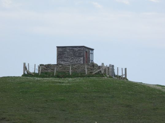 Bird hide, North Hill RSPB reserve