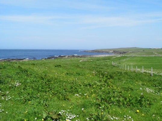 West coast near St Boniface Kirk