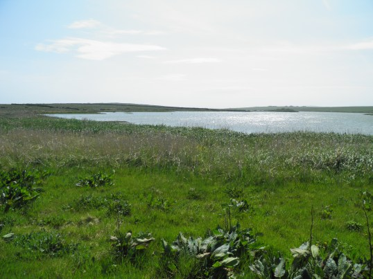 Loch of St Tredwell