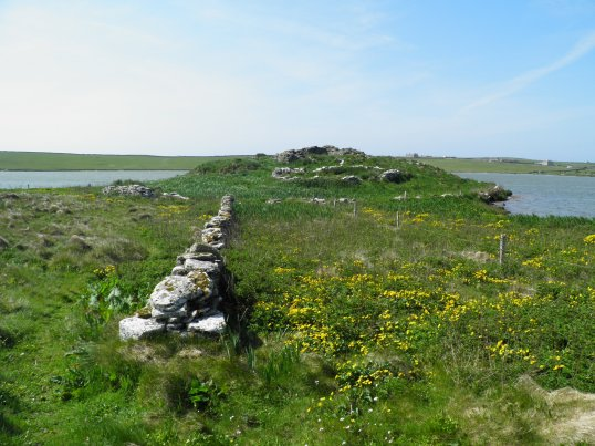 Ruins of St Tredwell chapel on the island