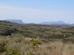 Moorland in Sutherland