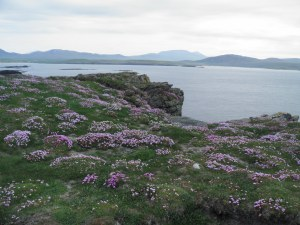 Faraid Head across to Cape Wrath