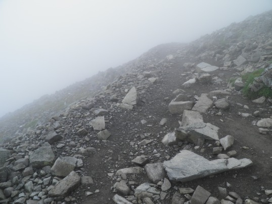 Tracking across a scree slope