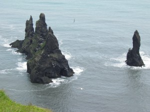 Sea birds and sea stacks