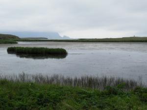 Höfn wetland