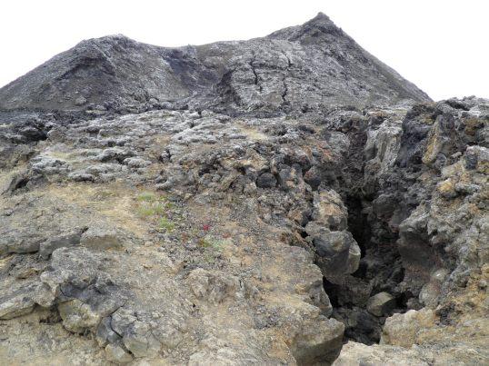 Crusty lava field