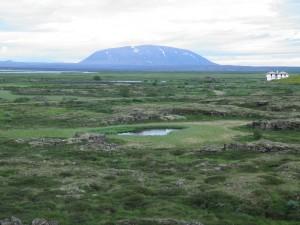 Wetlands near Skútustaðir